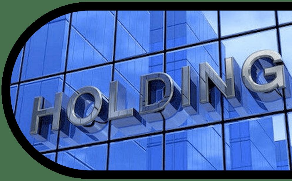 multi-entity-holding-companies